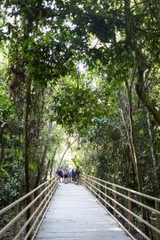 Costa Rica-36