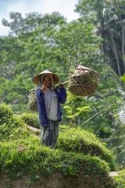 Indonesia-73